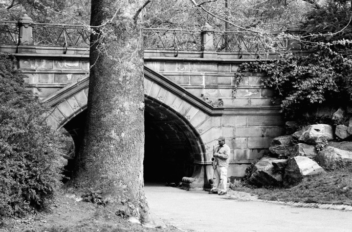 New York - Central Park -