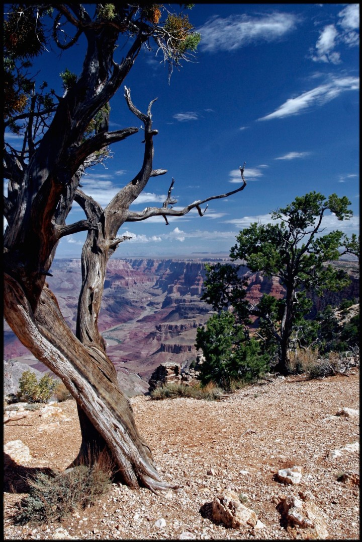 Grand Canyon National Park, Comté de Coconino, Arizona, États-Unis